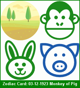 Chinese Zodiac 2019 Pig Reading - Green Monkey Born in Rabbit Month