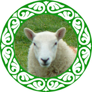 Chinese Zodiac Year of Sheep