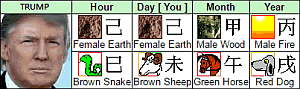 Donald Trump Chinese Astrology