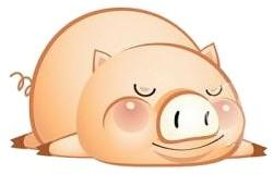 2019 Chinese New Year Zodiac Pig 2019 Chinese Zodiac Pig Vs